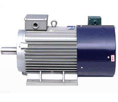 Ordinary asynchronous motor can be used as inverter motor?